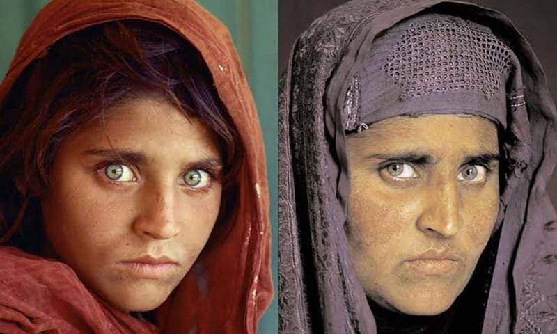 Official refutes involvement in CNIC issuance to 'Afghan girl'