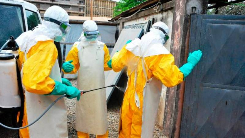 WHO chief says 'tremendous progress' made in Ebola fight
