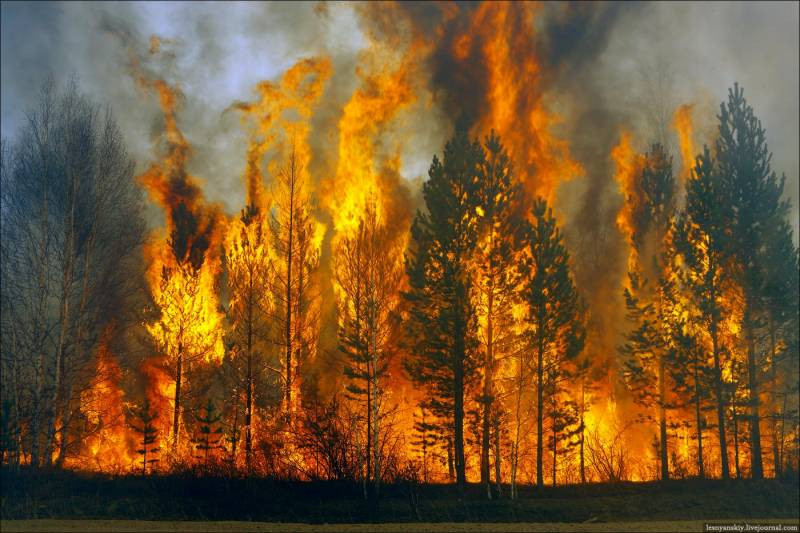 34 killed in Siberia forest fire; 7500 injured