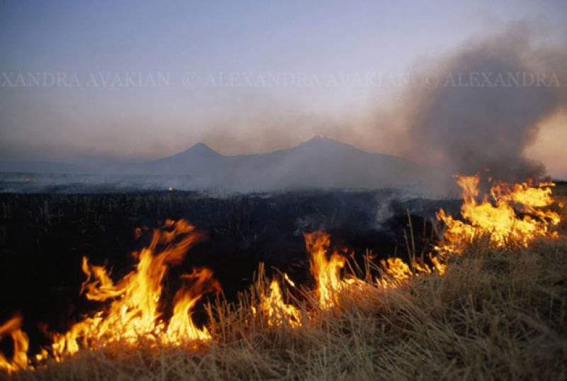 Farmer throws 8 years old in burning wheat fields