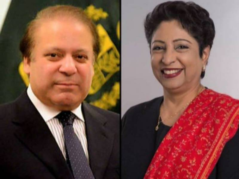 PM Nawaz for making Pakistan's participation at UN more meaningful