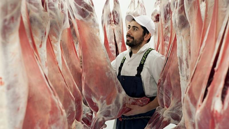 'Animal rights before religion': Denmark bans kosher and halal animal slaughter