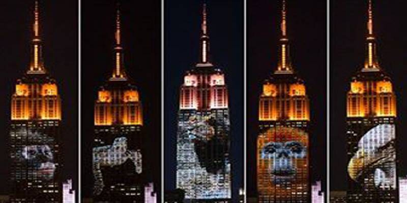 Empire State Building lights up endangered animals