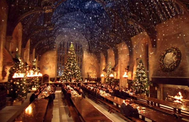 Harry Potter mega fans can have Christmas dinner at Hogwarts - for a little price