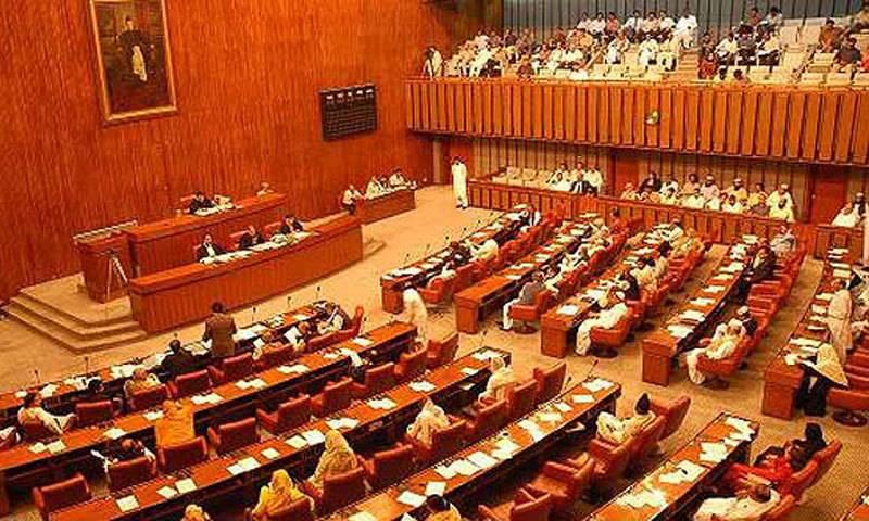 99 Pakistani Haj pilgrims martyred in Mina stampede, Senate told