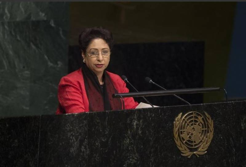Independent Palestine only solution to Middle East conflict: Maleeha Lodhi