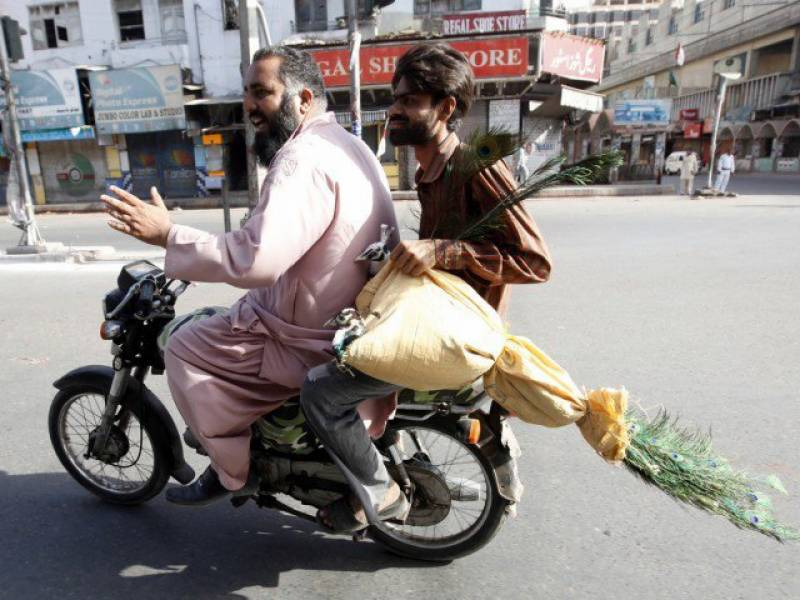 Chehlum processions: Sindh bans pillion riding