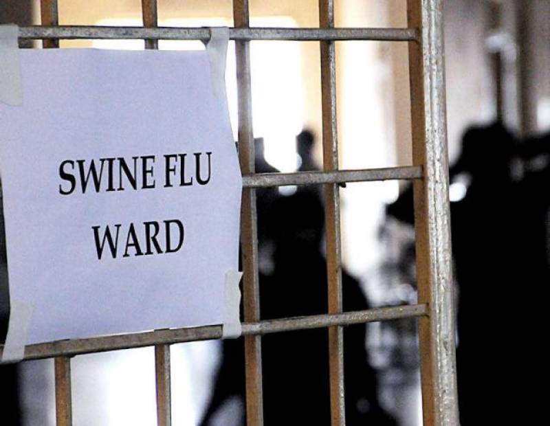 Swine Flu in 11 people in Peshawar confirmed