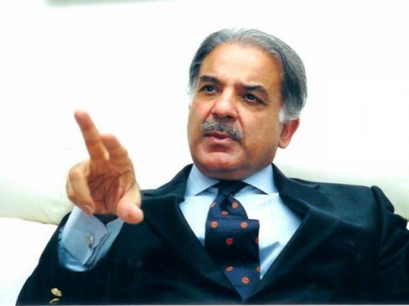 Mother tongue provides identity to nations: Shehbaz Sharif