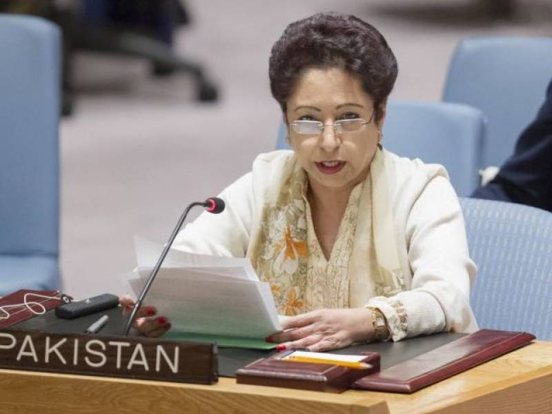 Pakistan urges implementation on two-state solution for Palestine conflict at UNSC