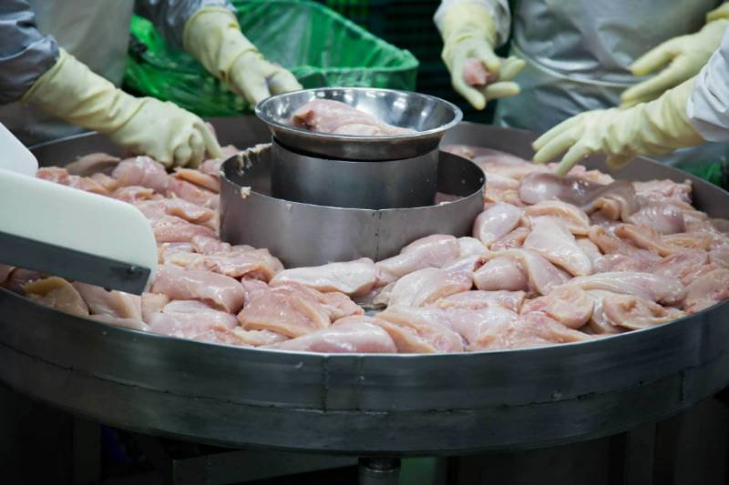 US poultry workers denied break, resort to wearing diapers on job