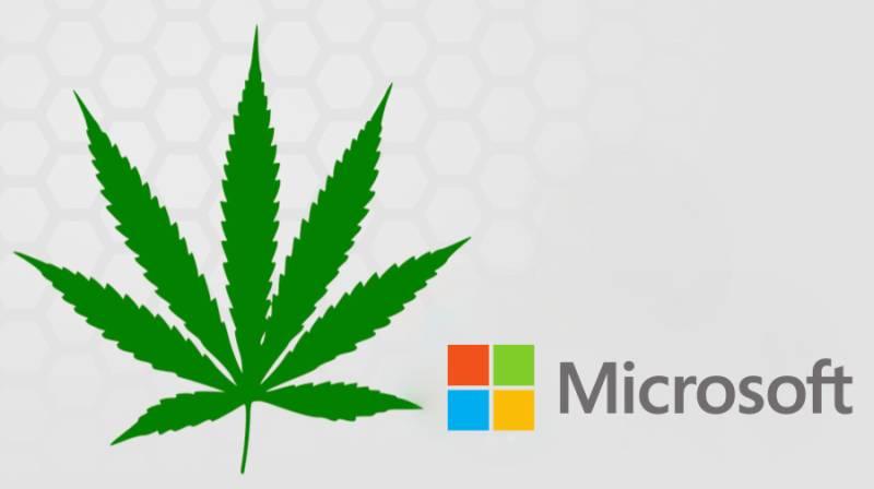 Microsoft only major software company providing solutions to marijuana dealers