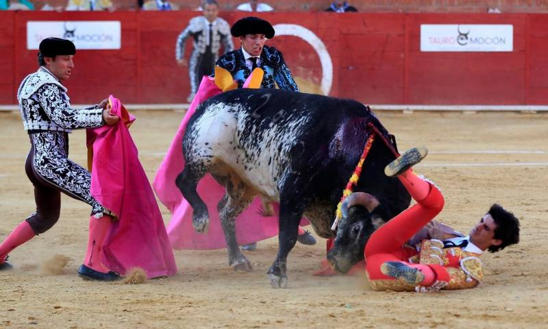 Spanish Matador killed by bull first time in 30 years