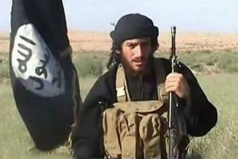 Daesh spokesman killed by Turkish fire in Syria