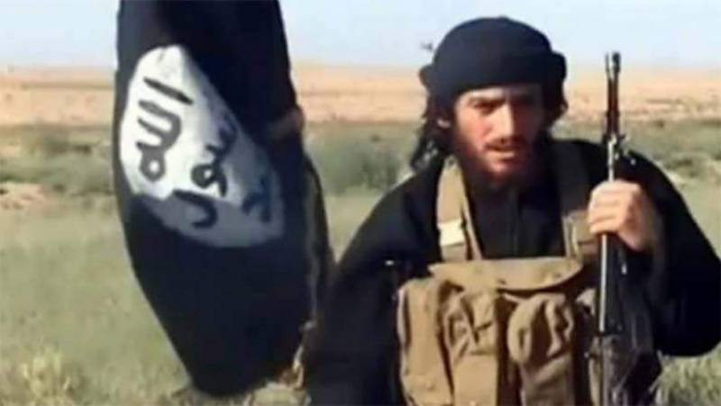 Key ISIS leader al-Adnani killed in US airstrike