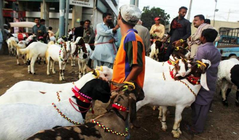 Govt announces three-day Eidul Azha-2016 holiday