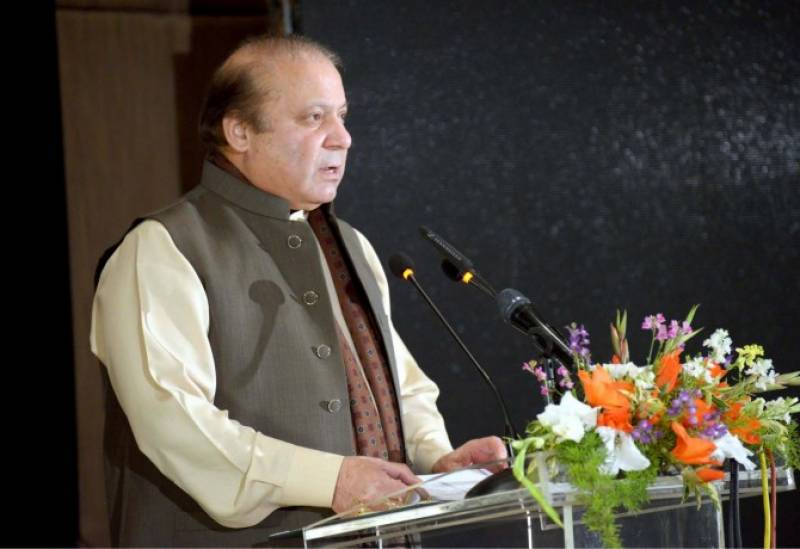 PM Nawaz takes strict notice of turtles smuggling