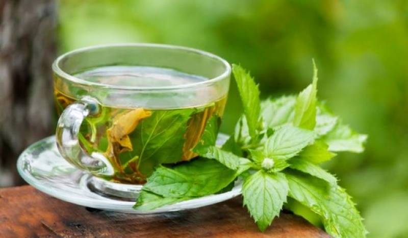 Health Tips: How green tea helps you lose weight naturally