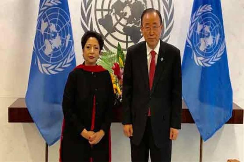 UN hails Pakistan for adopting bill against rape, honour killings