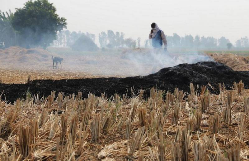 Smog situation: India imposes heavy penalty on stubble burning in Punjab