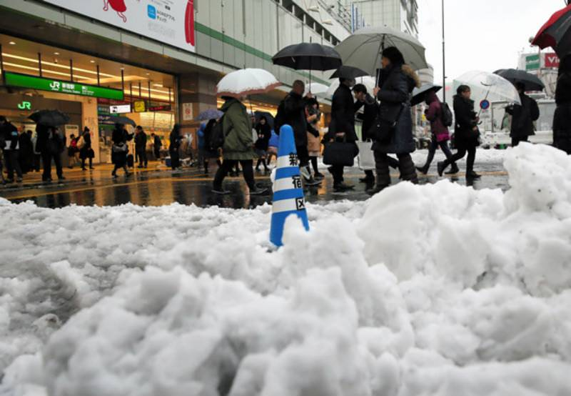 First November snowfall in Tokyo after 54 years