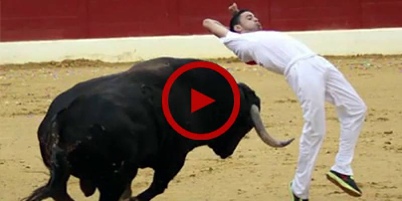 Video shows a man being thrown around as a bull attacks him in a narrow street