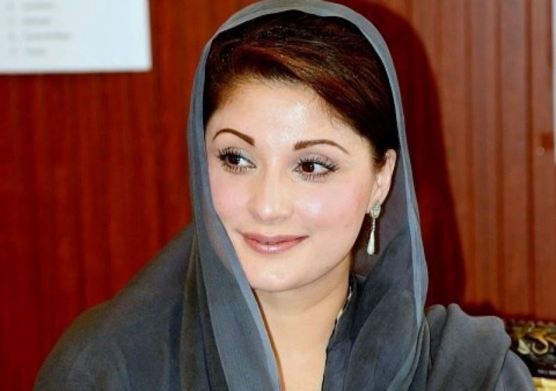 Maryam Nawaz carries hen that lays golden eggs: Judges