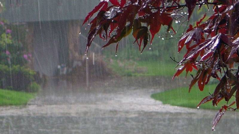 Rain likely in scattered areas of Punjab, Sindh