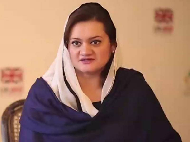 Naeemul Haque must apologize for 'irresponsible' allegations: Marriyum Aurangzeb