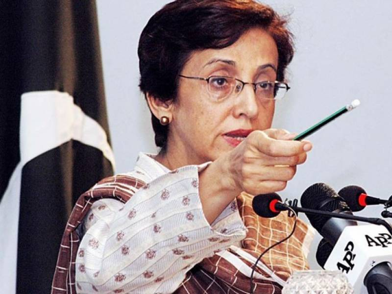 Retired military officers are free to accept any job: Tehmina Janjua