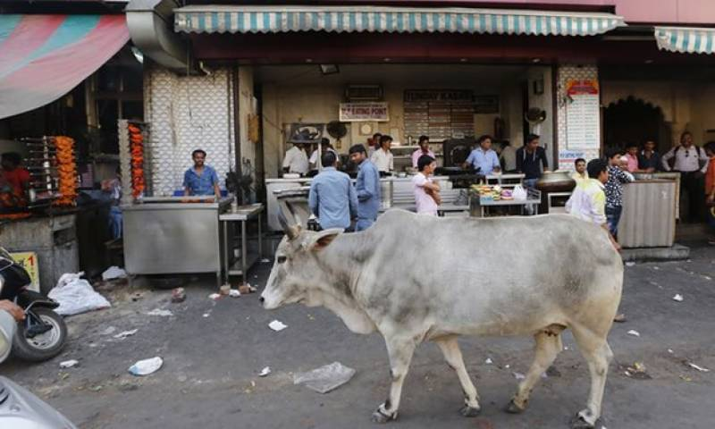Cow Terrorism: Muslim man in India dies after attack by Hindu extremists