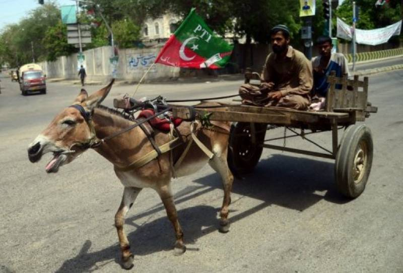 KP govt mulls over generating revenue by exporting donkeys to China