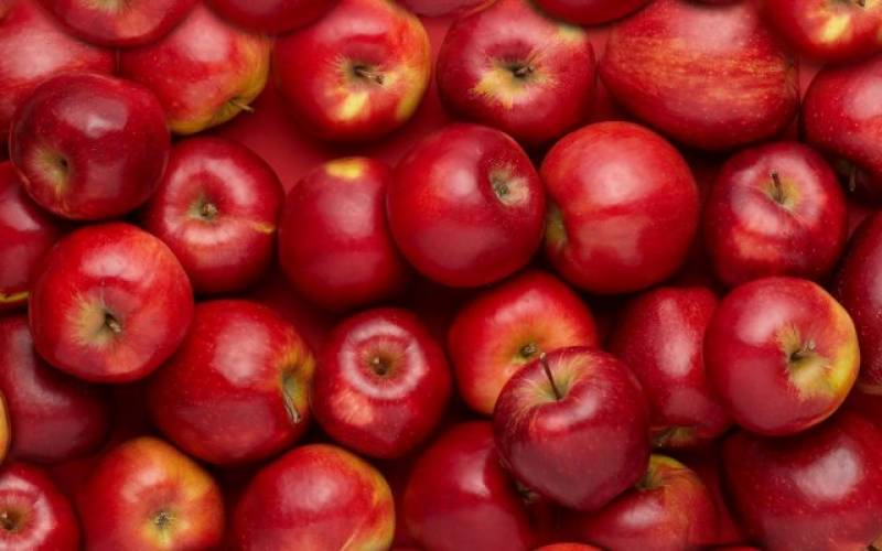 Pakistan at 10th position in world apple production