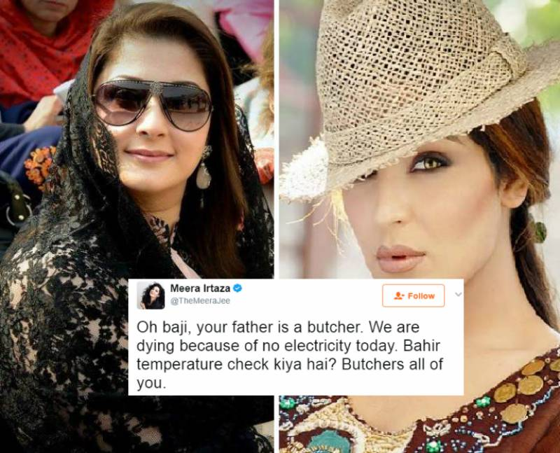 Meera unleashes her inner savage on Govt, Sharif family