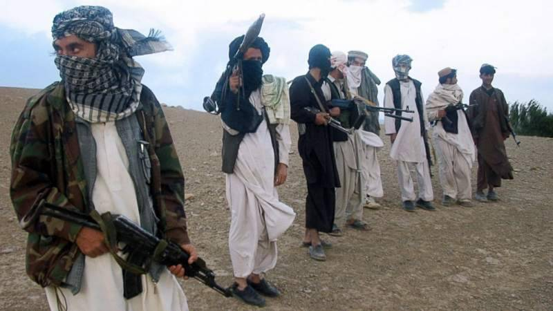 US again accuses Pakistan of providing 'safe havens' to terrorists