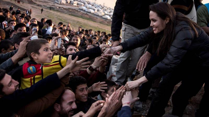 Angelina Jolie has put aside movies for cooking, picking up dog poop?