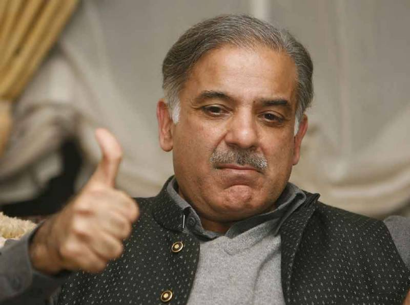 PML-N to elect Shahbaz Sharif as party president: Zafarul Haq