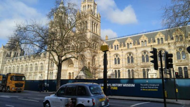 VIDEO: Several injured after car ploughs into pedestrians outside London museum