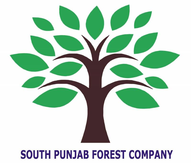 South Punjab Forest Company concludes technical and financial bids evaluation
