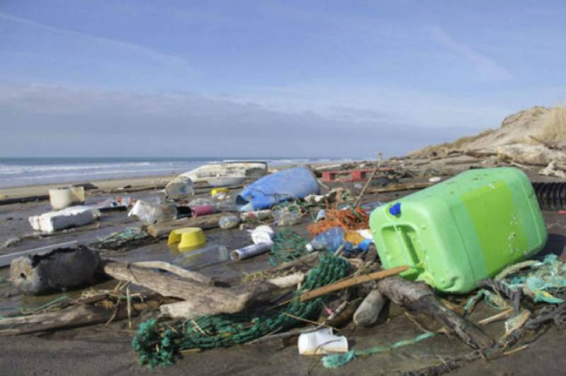 WWF-Pakistan's Green Office Network highlights issue of plastic pollution
