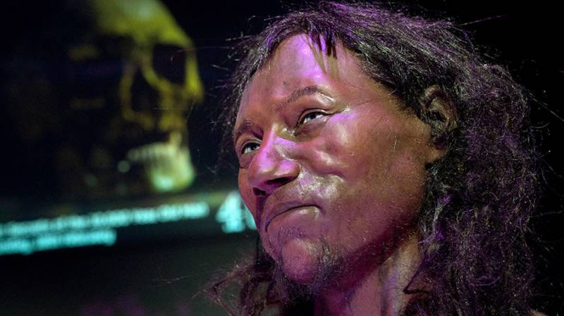 First modern Britons had 'dark to black' skin, groundbreaking DNA test on 10,000-year-old fossil reveals