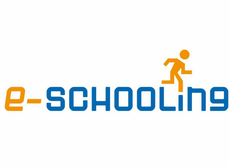 E-schooling is the magic bullet for education emergency