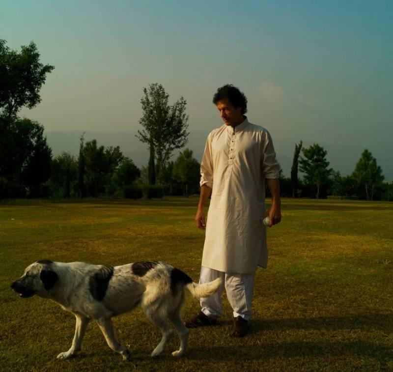 Imran Khan is not kicking out pet dogs from Bani Gala
