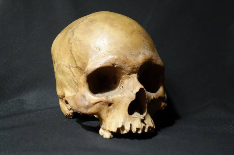 Indian soldier's skull reveals horror of 1857 mutiny against Brits