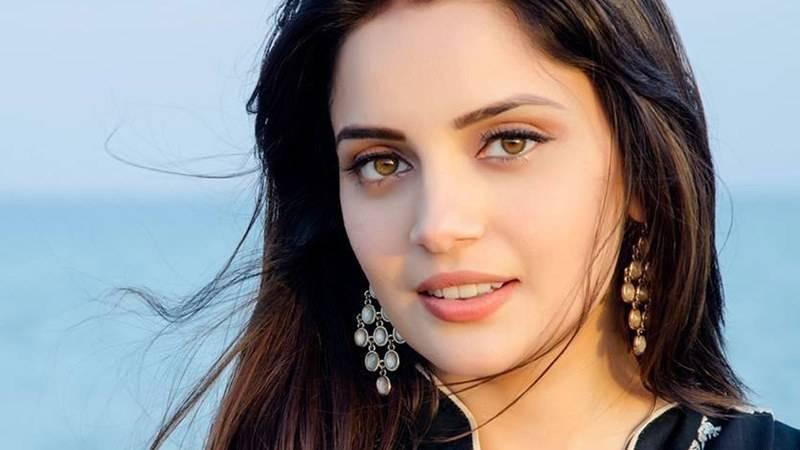 Armeena Khan shuts down Rabi Pirzada on her concept of 'right women'