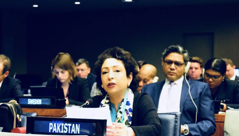 Pakistan condemns Israel's state terrorism in Gaza at UN; calls for independent probe