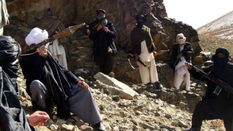 Afghan regime, Taliban agree on unprecedented ceasefire for Eid