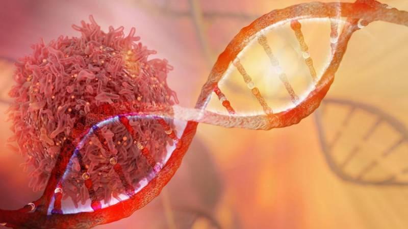 Australian scientists identify gene that helps treat cancer