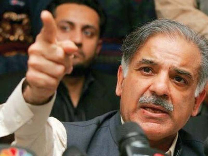 Shahbaz Sharif condemns apprehension of PML-N workers in letter to Caretaker Punjab CM