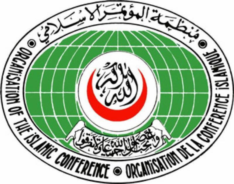OIC strongly condemns Dutch parliamentarian's announcement about blasphemous cartoon competition